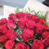 Магия Флористическая студия «Gloriа Day» - розы с бесплатной доставкой!
